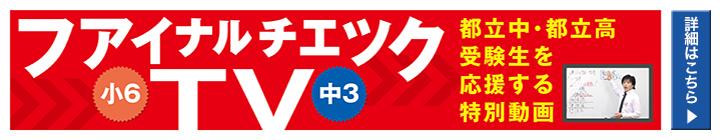 ファイナルチェックTV